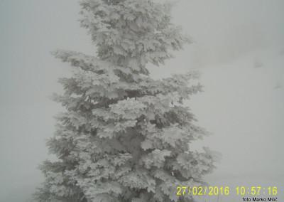 06 PD Ljutomer, URŠLJA GORA, 27.2.2016