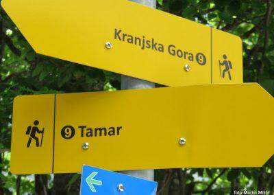 06 MO Klopotec - Planica Tamar, 4.junij 2017