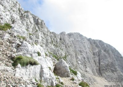 125 Bovški Gamsovec-Kriški podi, 14.00-001