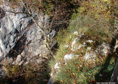 133 Bärenschutzklamm-Hochlantsch, 8.10.2017-16.02