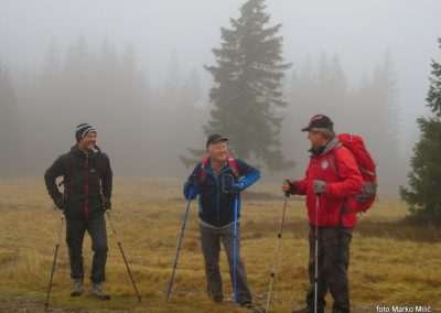 06 malo pred Črnim vrhom, 1519m, 8.49-001