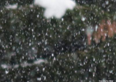 49 snežna pluha na Pesniku, 1101m, 14.59
