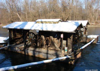 066 IZLET V NEZNANO 2017 - Mura in obmurski log