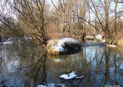 091 IZLET V NEZNANO 2017 - Mura in obmurski log