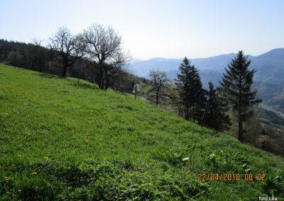 022 pogled na Zasavsko hribovje s travnika pri kmetiji Mežnar, 970m, 9.02
