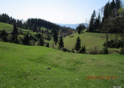 033 proti Tolstemu vrhu, kmetija Ptica, 930m, 9.34