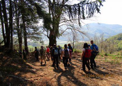 052 s Tolstega vrha proti Čreti, nad kmetijo Ručgar, 950m, 10.51