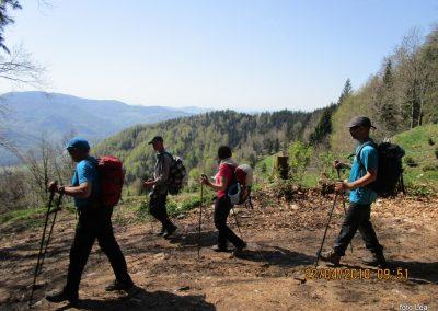 053 s Tolstega vrha proti Čreti, nad kmetijo Ručgar, 950m, 10.51