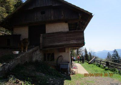 056 s Tolstega vrha proti Čreti, kmetija Ručgar, 900m, 10.57