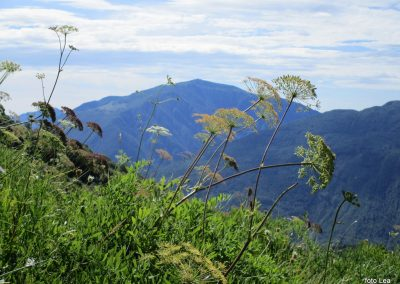022 daleč čez dolino Nadiže se dviga Matajur, 10.04