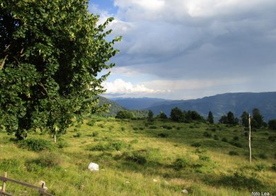 083 pogled čez dolino Soče proti jugu - Trnovski gozd z Golaki