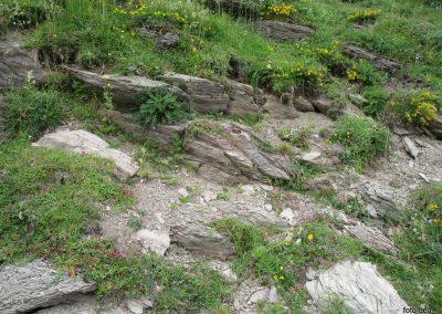 168 tak skalnjak bi bil lep tudi doma