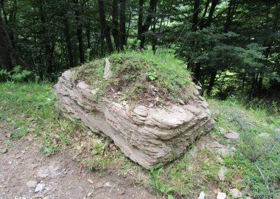 170 še ena ideja za skalnjak