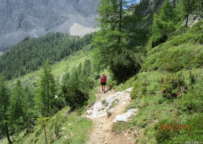 025 nekoliko bolj strmo proti planini Zgornja Krma, 11.36