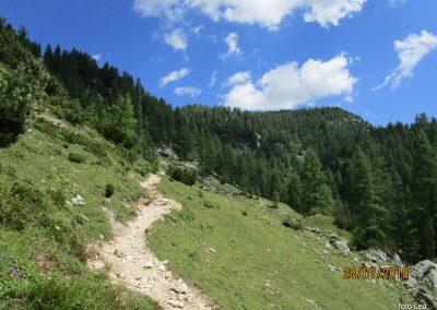 026 nekoliko bolj strmo proti planini Zgornja Krma, 11.36