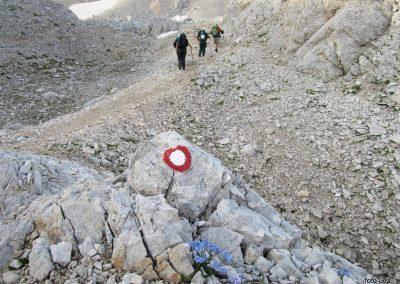168 na začetku pot preči melišče pod Ržjo in nas pripelje na greben med Ržjo in Kredatico, 7.28
