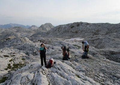 171 na začetku pot preči melišče pod Ržjo in nas pripelje na greben med Ržjo in Kredatico, 7.34
