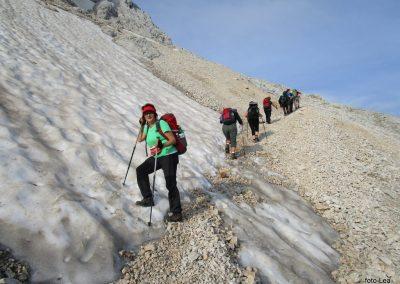 174 na začetku pot preči melišče pod Ržjo in nas pripelje na greben med Ržjo in Kredatico, 7.44