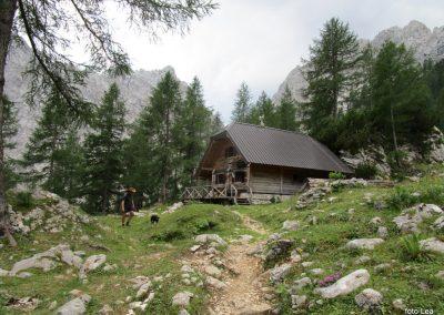 250 planina Zgornja Krma - planinski stan Prgarca - 1763m, 13.02
