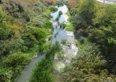 22 na poti od Dolge vasi do Velike Polane, Kobiljski potok-kanal, 11.33