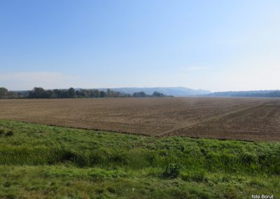 25 na poti od Dolge vasi do Velike Polane, pogled nazaj na Lendavske gorice, 11.46