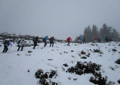 099 na poti od Doma na Menini na vrh Vivodnik, 12.43