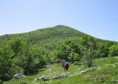 093 VELEBIT,s Konjevaće na Veliki Sadikovac 1286m, 13.25