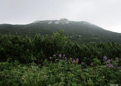 051 VZPON NA SNEŽNIK; na poti s Sviščakov na Snežnik , 11.06
