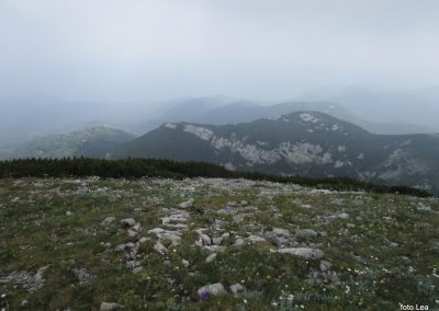 073 VZPON NA SNEŽNIK; na vrhu Velikega Snežnika 1796m, 11.33