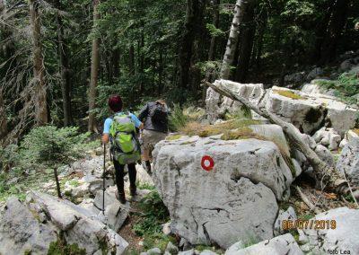 133 VZPON NA SNEŽNIK;na poti z Malega Snežnika do Sviščakov, 13.58
