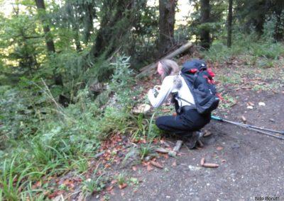 12 SLJEME, vzpon proti planinskemu domu na Hunjki - 'marele' ob poti, 10.04