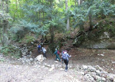 13 SLJEME, vzpon proti planinskemu domu na Hunjki, 10.16