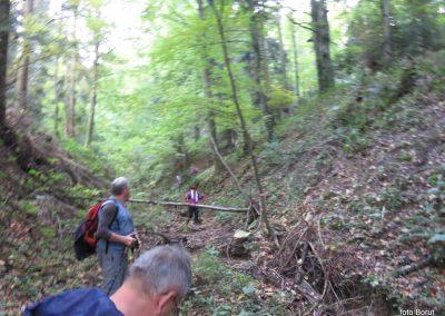 72 SLJEME, na dolgi in blatni poti od Hunjke do vasi Slani potok, 16.00
