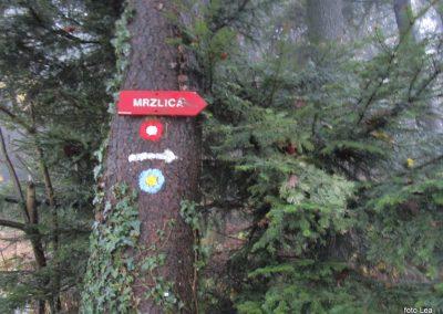 003 MRZLICA-KAL, odhod s prelaza Vrhe, 722m, 7.22