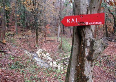 110 MRZLICA-KAL, na od planinskega doma na Kalu v naselje Marno, 12.33