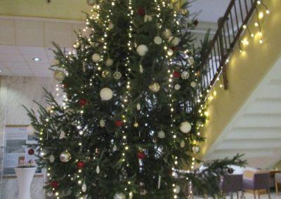 11 PLANINSKI PLES v Lendavi, 14. december 2019