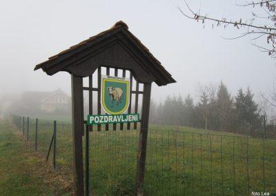67 POHOD V NEZNANO - 8. december 2019, na poti od turistične kmetije Vrbjak do gostišča Žinko v Moravcih, 12.21