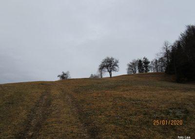 057 LIMBARSKA GORA 773m, na poti od Limbarske gore na Golčaj, 11.12