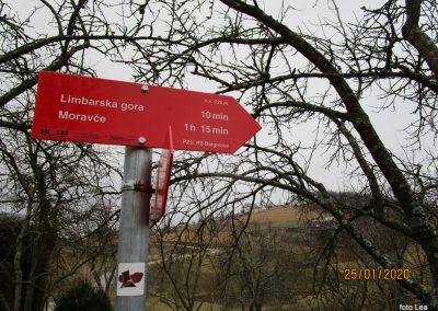 064 LIMBARSKA GORA 773m, na poti od Limbarske gore na Golčaj, 11.20