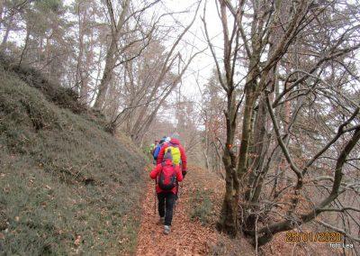 072 LIMBARSKA GORA 773m, na poti od Limbarske gore na Golčaj, 11.52