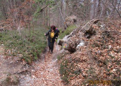 078 LIMBARSKA GORA 773m, na poti od Limbarske gore na Golčaj, 11.58