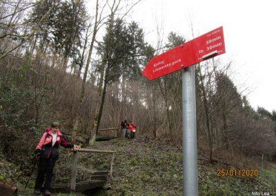 103 LIMBARSKA GORA 773m, na poti z Golčaja v Blagovico, 12.51